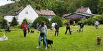 Thüringen Hundeschule